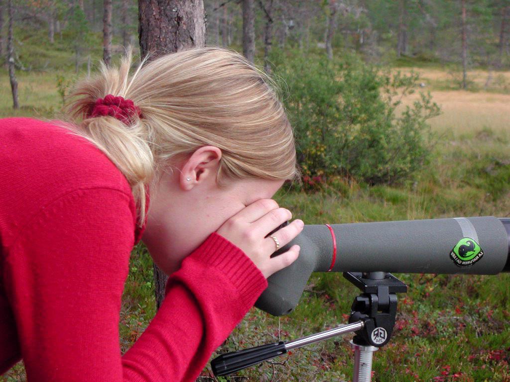 Elev som titterpå fugl i teleskop. Foto
