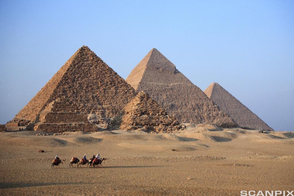 Gizapyramidene i Egypt. Foto.