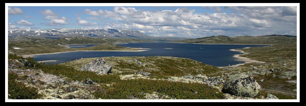 Hardangervidda. Foto.