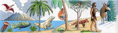 Illustrasjon som viser en tidslinje med utvikling av arter. Tegning