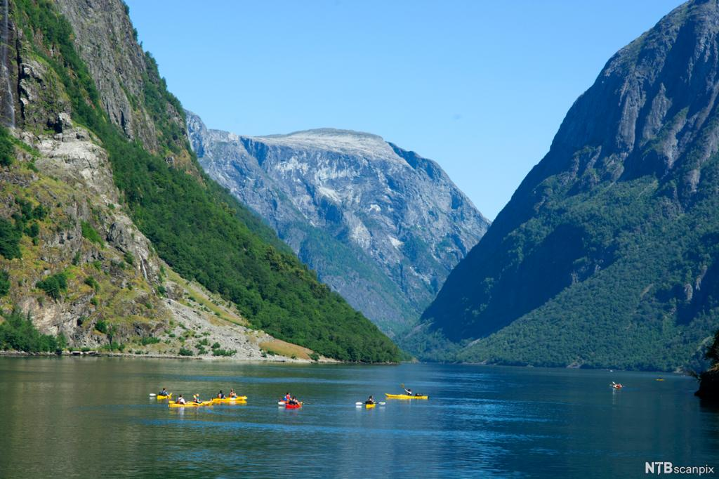 Menneske som padlar kajakkar i ein fjord. Høge fjell på sida. Foto.