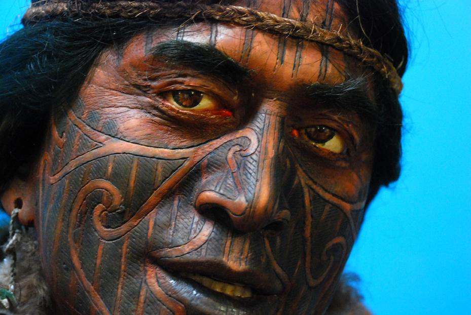 A maori with traditional maori painting in his face. Photo.