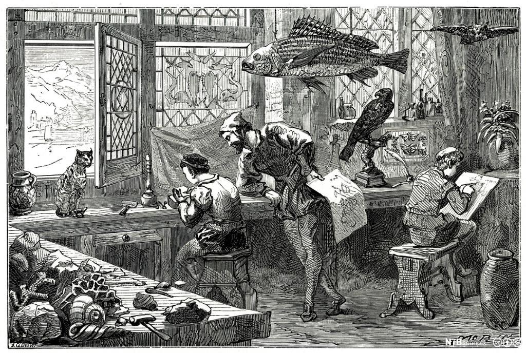 Vitenskapsmann fra 1500-tallet jobber i sitt verksted. Illustrasjon