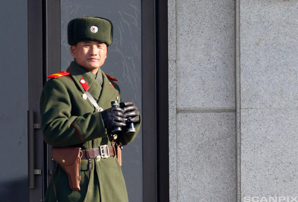Nordkoreansk soldat. Foto.