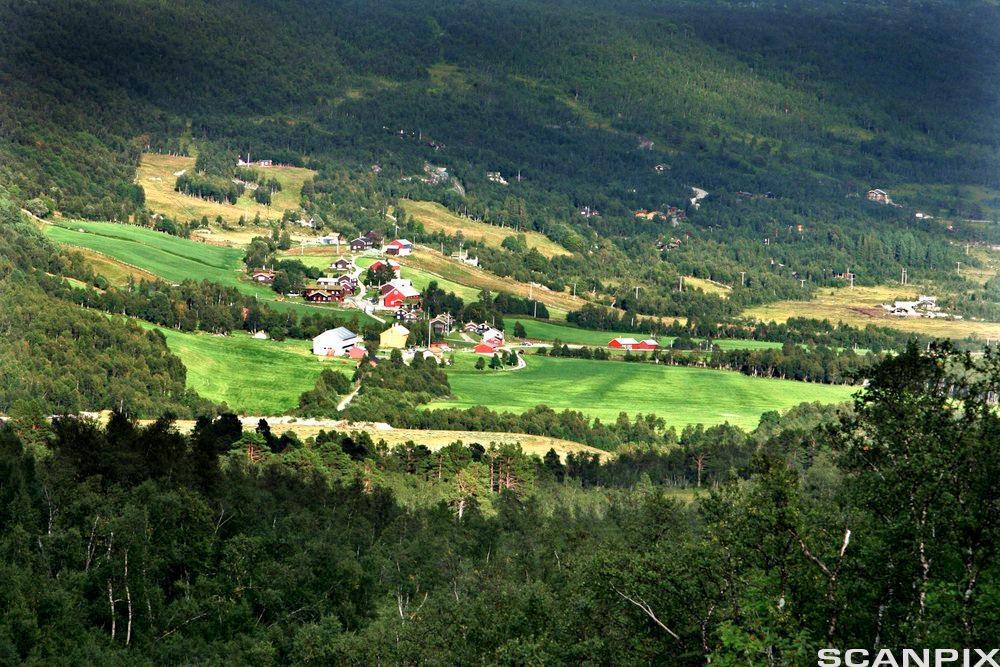 Storli-gårdene i Oppdal. Foto.