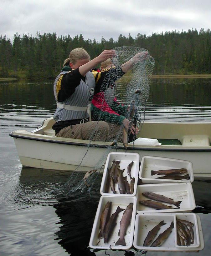 To elever sitter i båt og holder opp et fiskegarn med fisk. Foto.