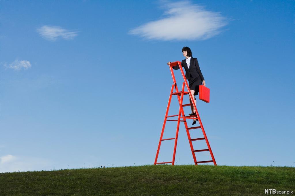 En karrierekvinne med rød koffert klatrer opp en stige som står på en plen. Foto.
