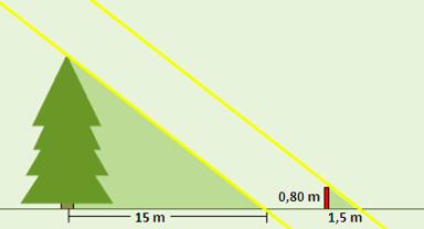 Bilde av figurem som det henvises til i eksempelet nedenfor