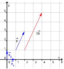 Bilde av vektorer på koordinatform. Illustrasjon