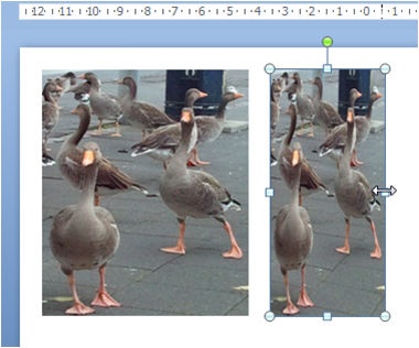 To bilder i en PowerPoint-presentasjon