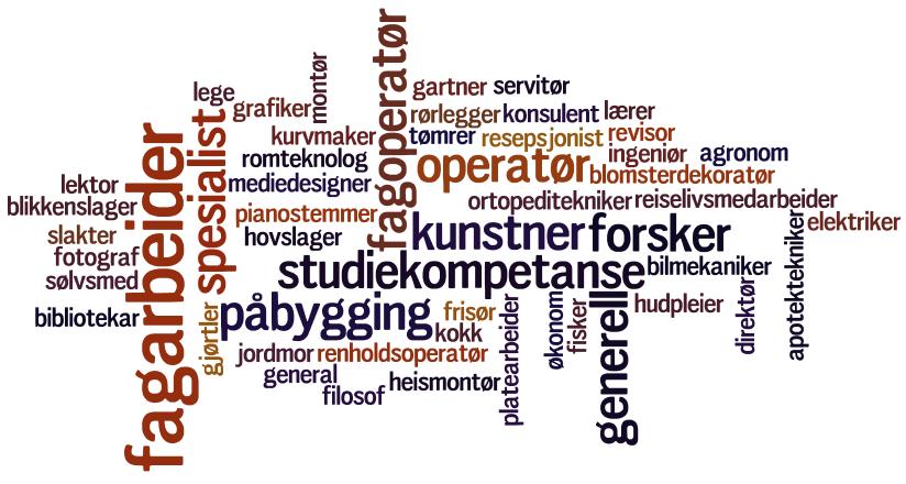 Ordsky om ulike yrker. Foto.