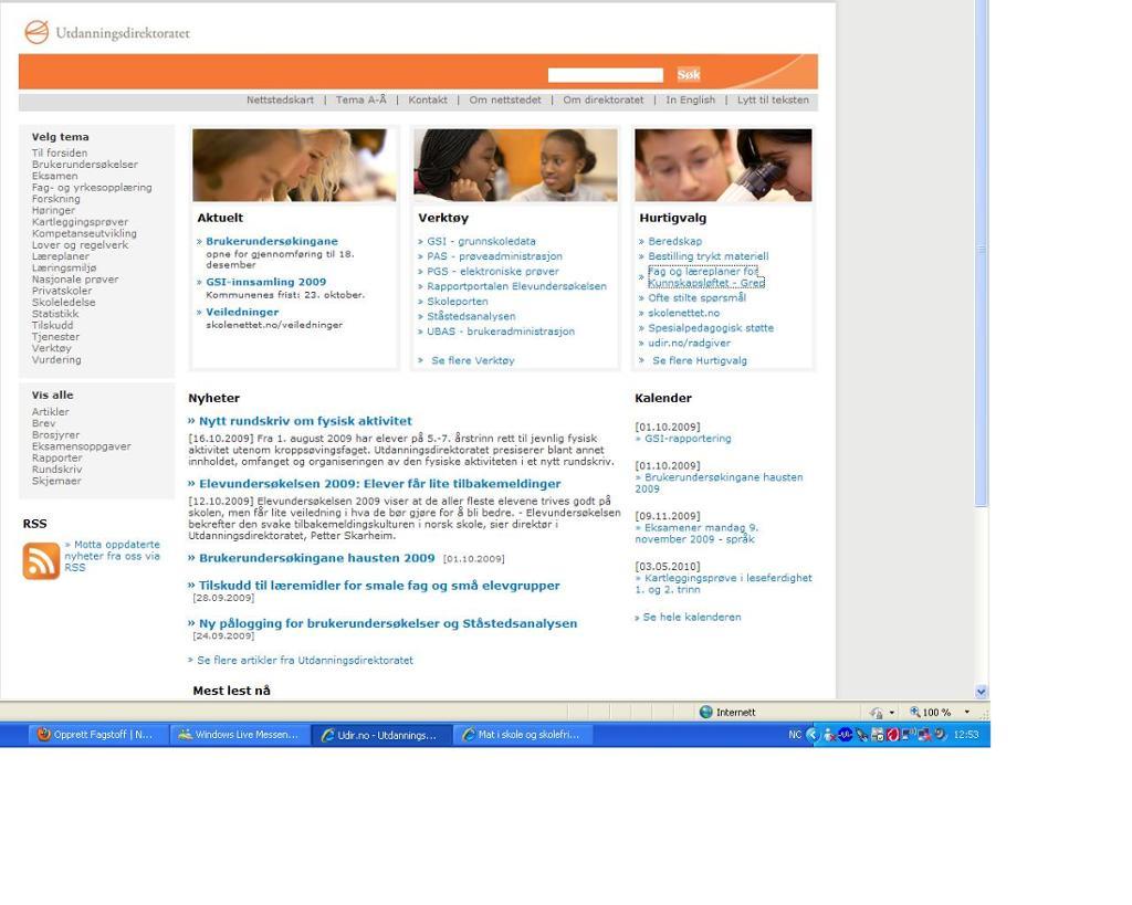 bildet viser en nettside. UDIR