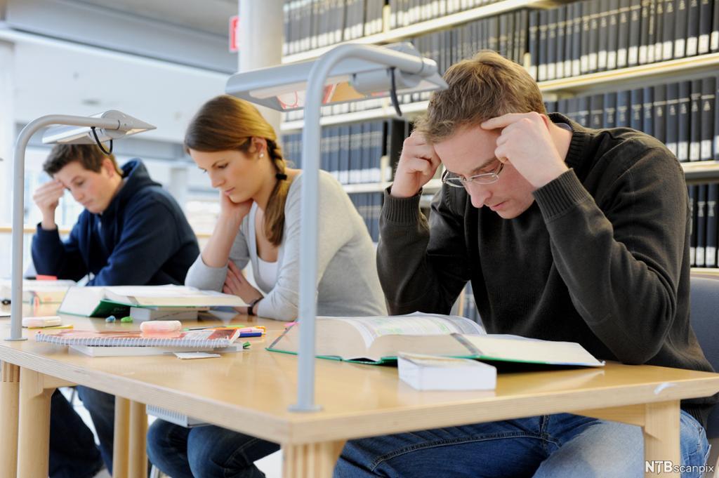 Tre studenter i dyp konsentrasjon på lesesalen. Foto.