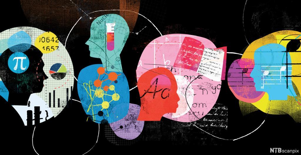 Kollasj som tematiserer ulike fag og læring. Illustrasjon.