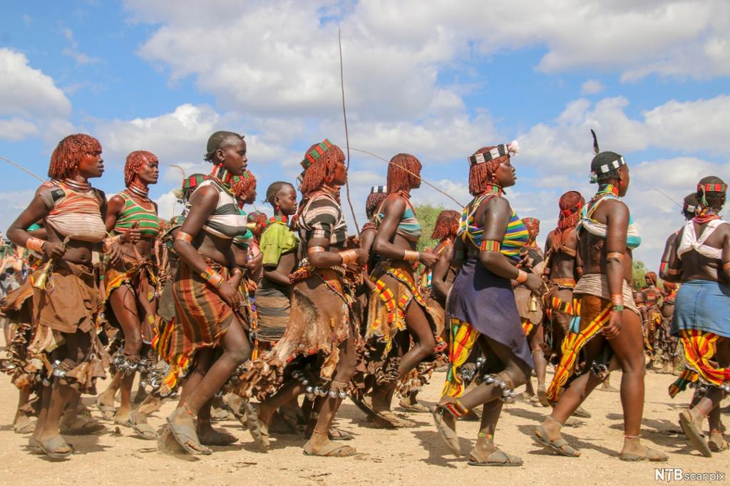 En gruppe fra Hamerfolket i Etiopia fremfører en stammedans. Foto.