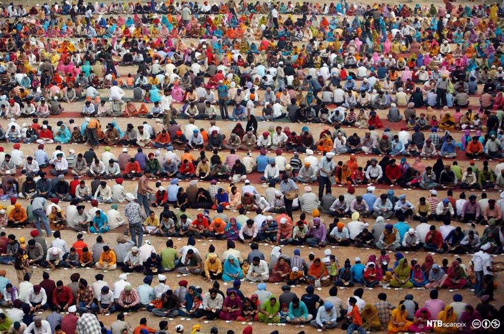 Mange mennesker sitter på rekke og spiser. Foto.