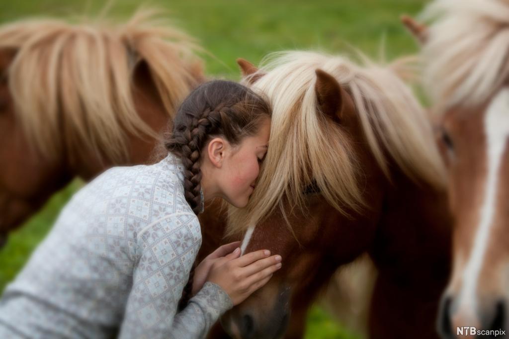 Jente som legger ansiktet mot mana på en hest. Foto.
