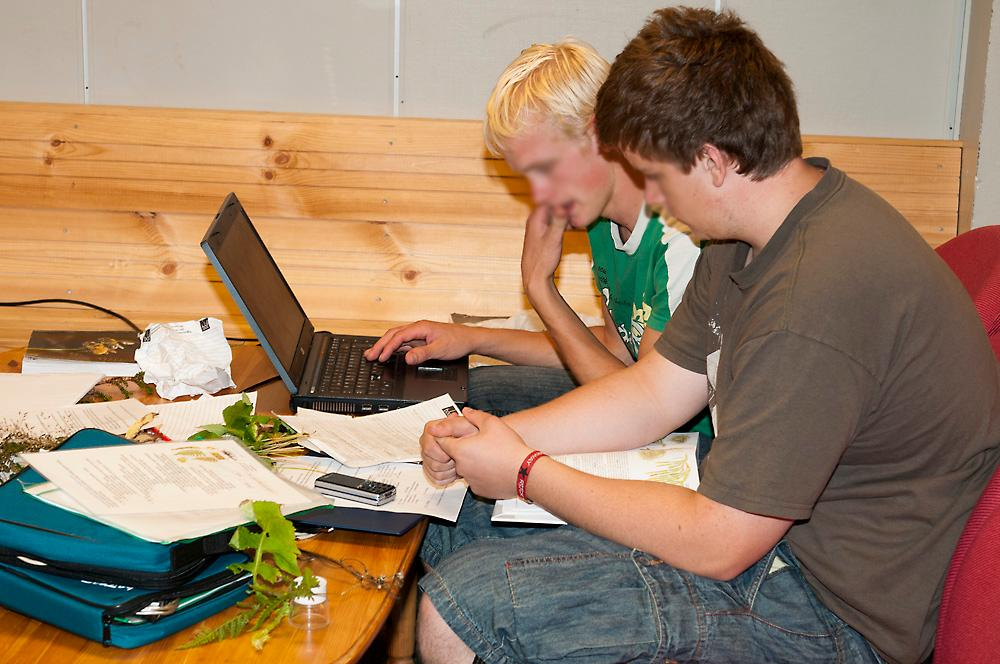 To elever sitter sammen og jobber med papirer og pc. Foto.