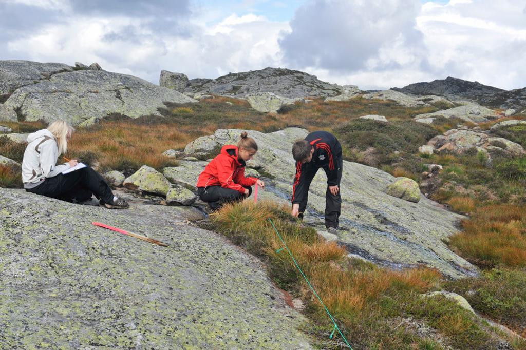 Elever gjør undersøkelser i fjellet. Foto
