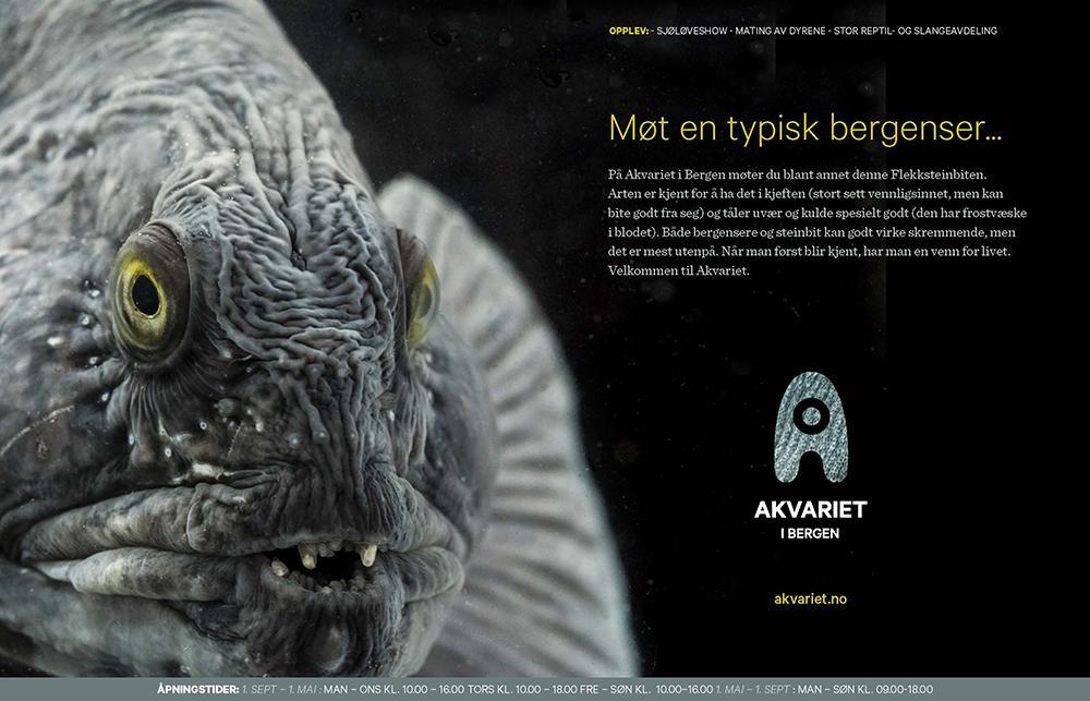 Annonse med bilde av fisk og tekst. Faksimile.