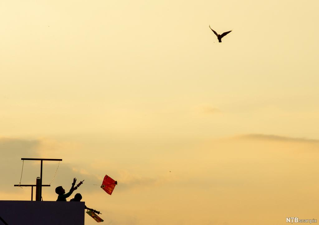 Two children flying a kite from a rooftop