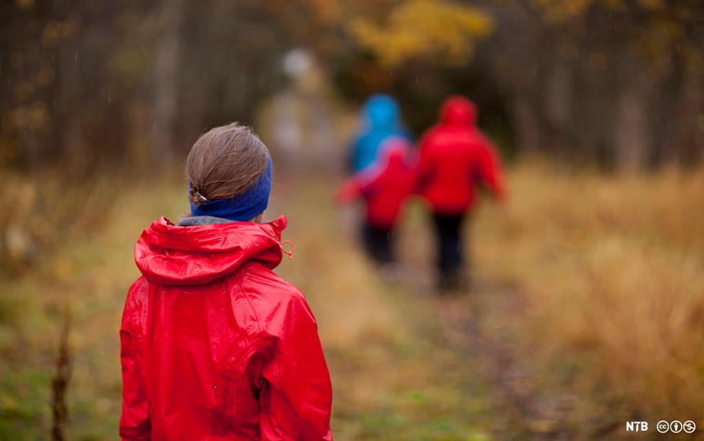 Ei jente som ser tre andre personar gå langt framom ho i skogen. Det er haust, og alle har regnklede på. Foto.