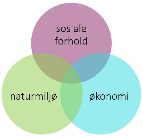 Figur som viser at bærekraftig utvikling handler om miljø, sosiale forhold og økonomi. Grafikk.