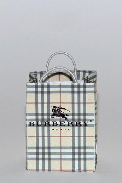 Burberry bag. Photo.
