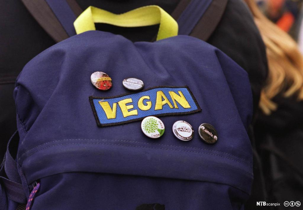 Merke med Vegan på en blå ryggsekk. Foto.