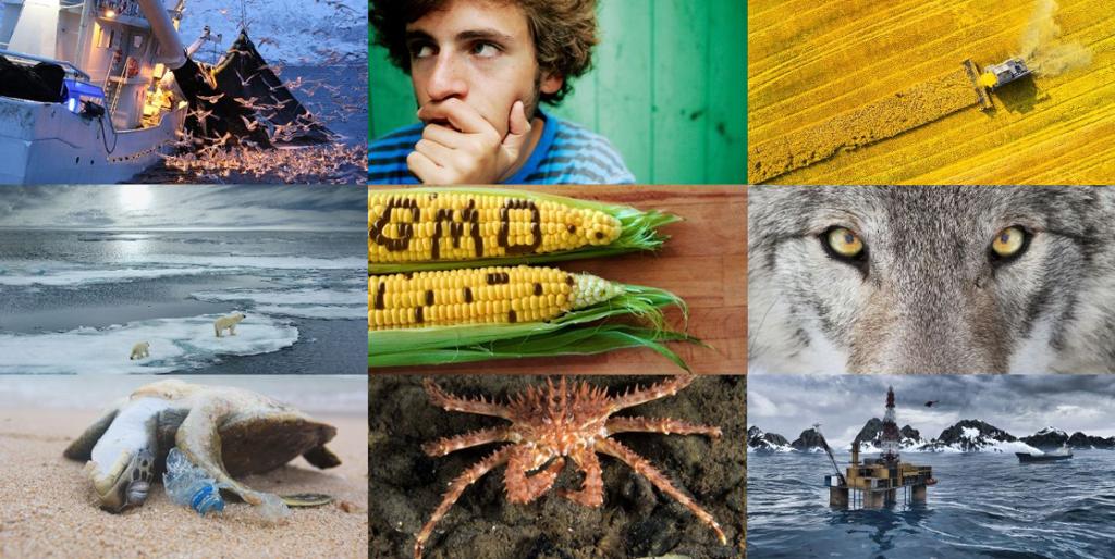 Collage av bilder som viser globale interessekonflikter. Foto.