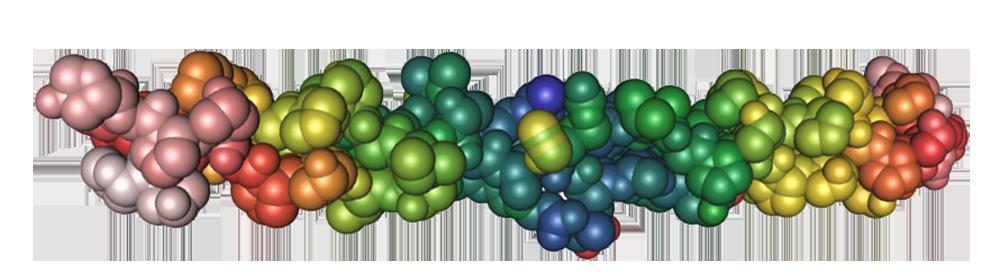 Fiberprotein. Illustrasjon.