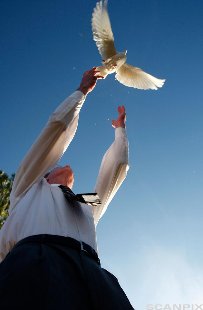 One of the 13 doves released for the 13 victims of the massacre at Columbine High School is released at the conclusion of a memo