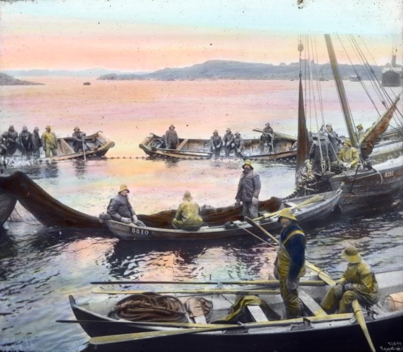 Robåter og fiskeskøyter. Maleri.