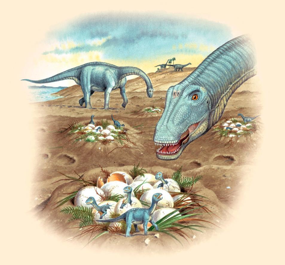 Slik tror man dinosauren Bonitasaurus dinosaurs formerte seg og la egg i reir. Illustrasjon.