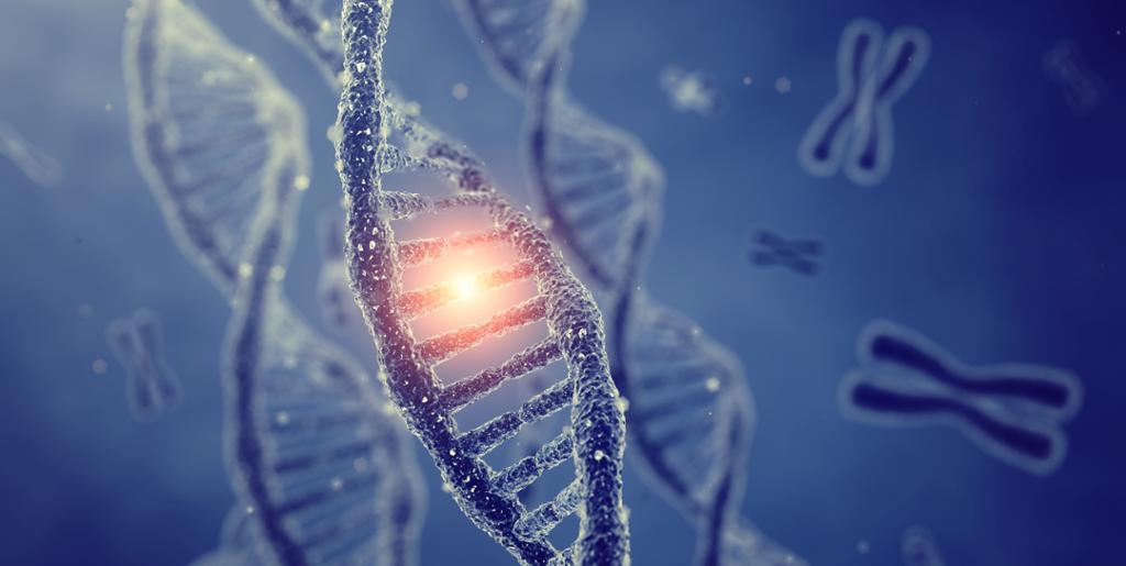 DNA dobbel heliks og kromosomer på blå bakgrunn. Foto.