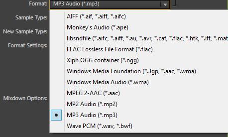 Liste der man kan velge mellom ulike filformater. Skjermdump.