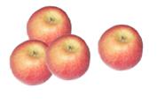 Fire røde epler.foto.