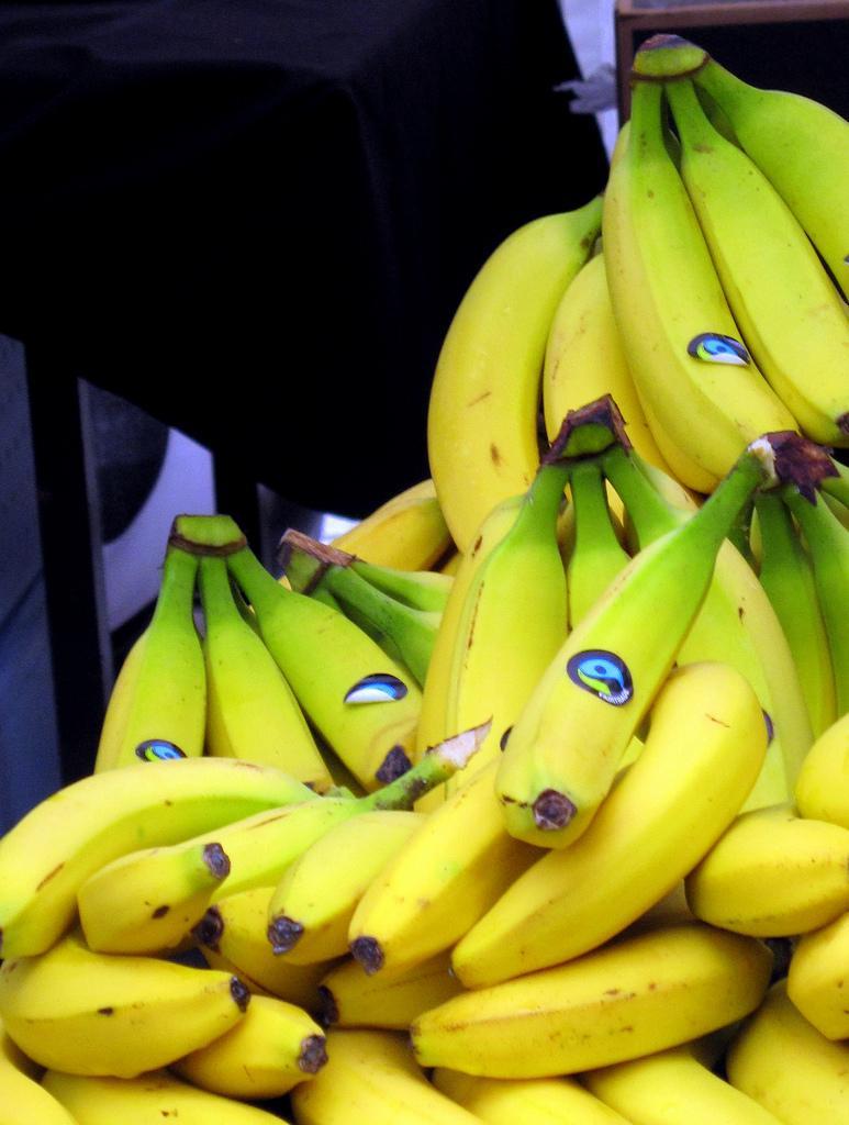 Bananar som er merkte med fairtrade. Foto