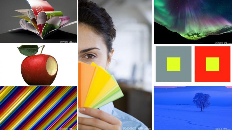 Ittens fargekontraster