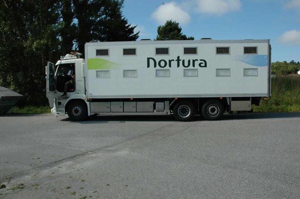 Bil for dyretransport. Foto