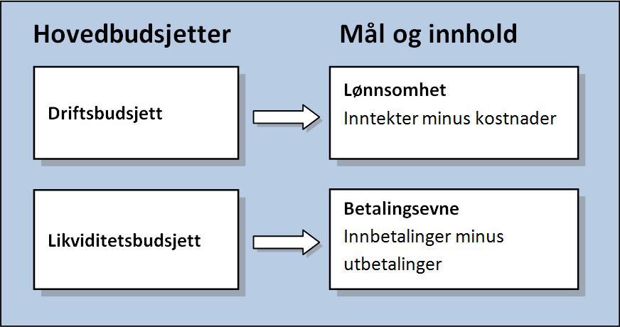 Driftsbudsjett og likviditetsbudsjett