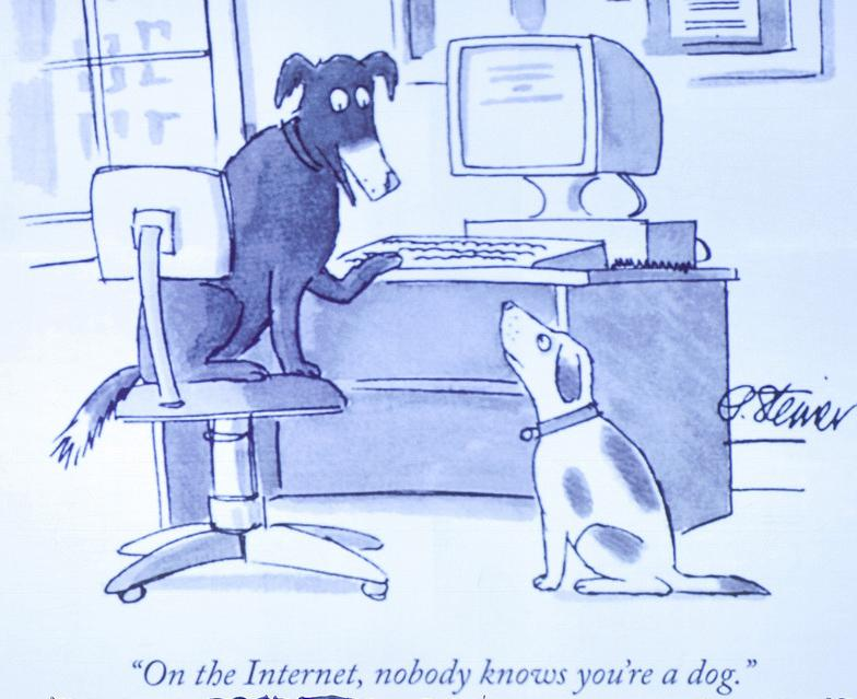 To hunder skriver melding på Internett. Illustrasjon.