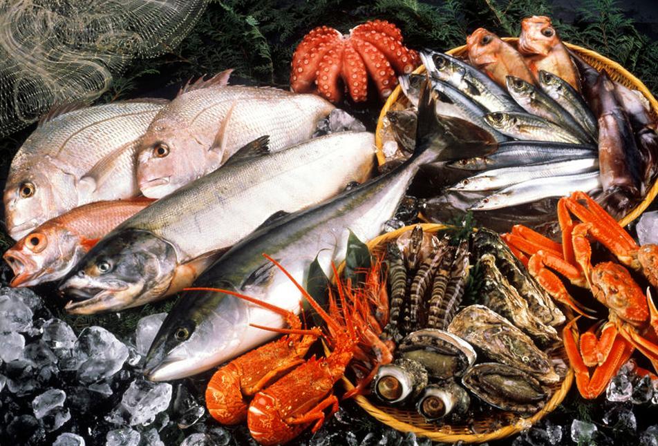 Ulike fiskeartar og anna sjømat ligg på is. Foto.