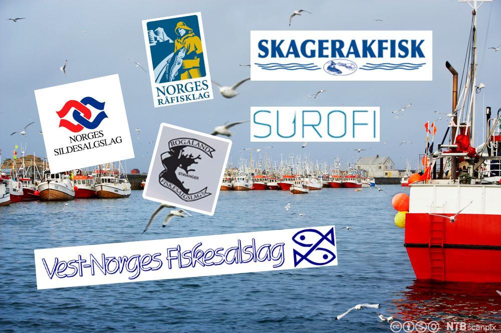 Norske fiskesalgslag. Logokollasje.