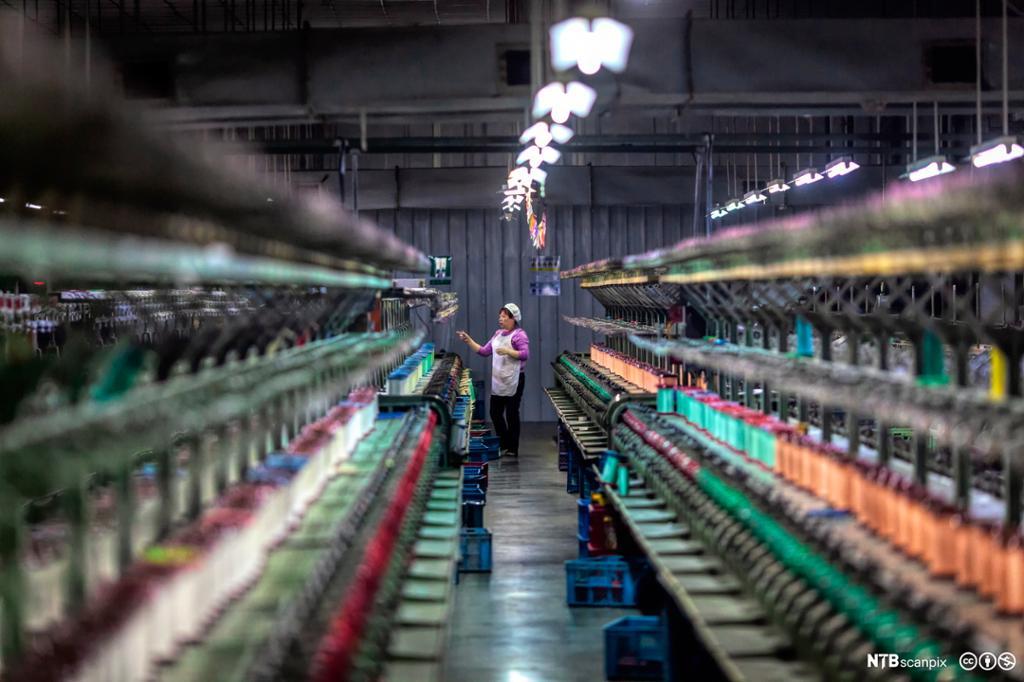 En kvinne arbeider i en moderne fabrikk for silkeproduksjon i Shengze i Kina. Foto.