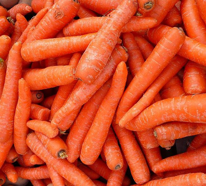 Mange gulrøtter. Foto