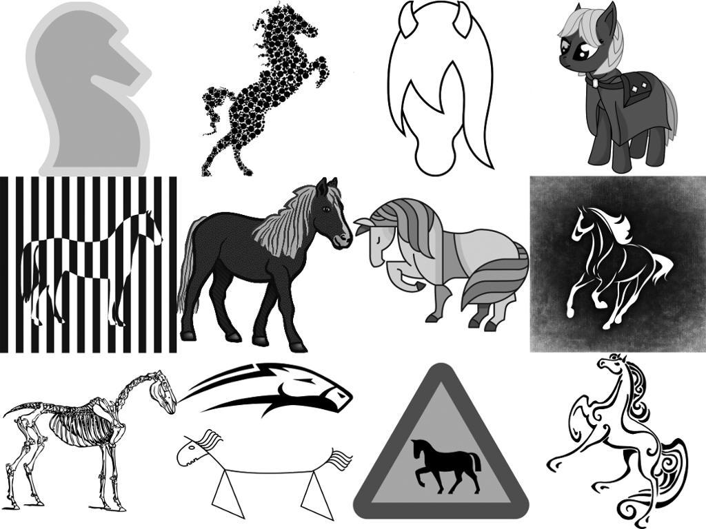Illustrasjoner av hester. Kollasj.