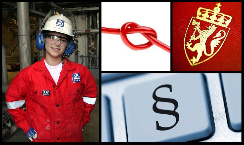 Fotokollasje for felles HMS ressurs. Foto.