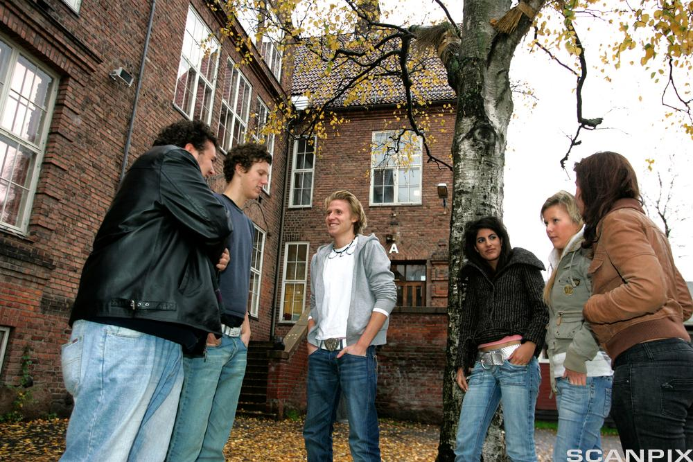 Ungdommer i skolegården. Foto.