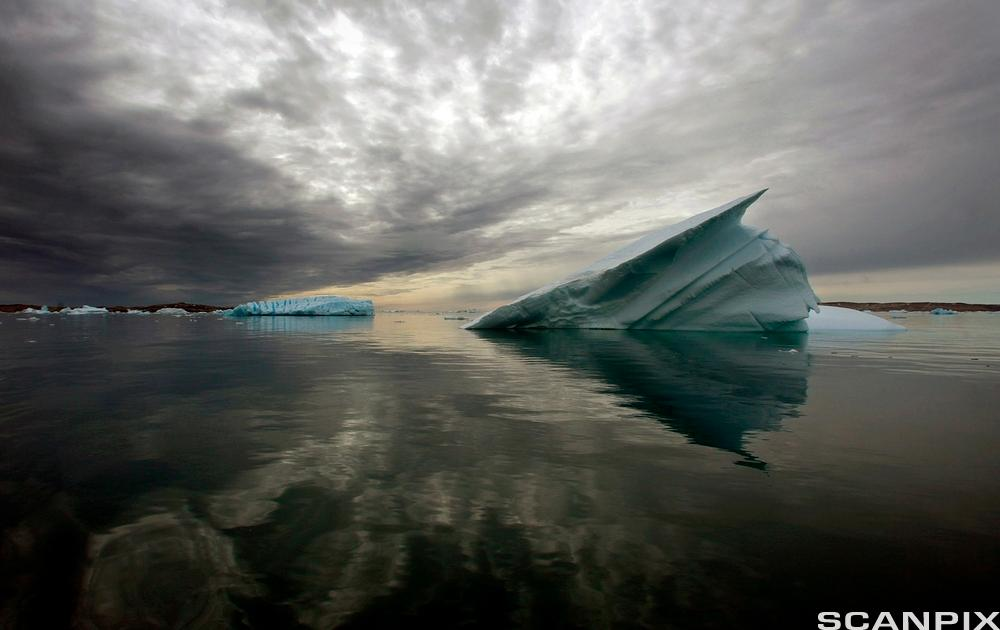 Icebergs float in the calm waters of a fjord, south of Tasiilaq in eastern Greenland